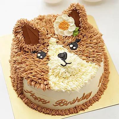 Sweet Cat Design Cake