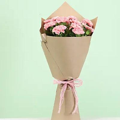 Perfect 12 Light Pink Carnations Bouquet