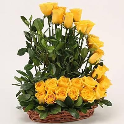 Yellow Roses Basket Arrangement