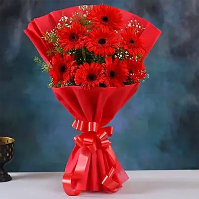 Red Elegance Gerbera Blossoms