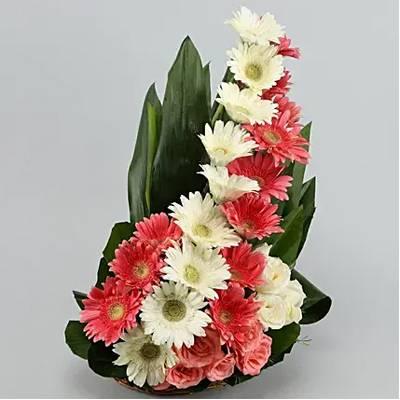 Zesty Youthful Floral Beauty